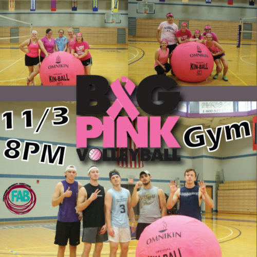 FAB Big Pink Volleyball '17