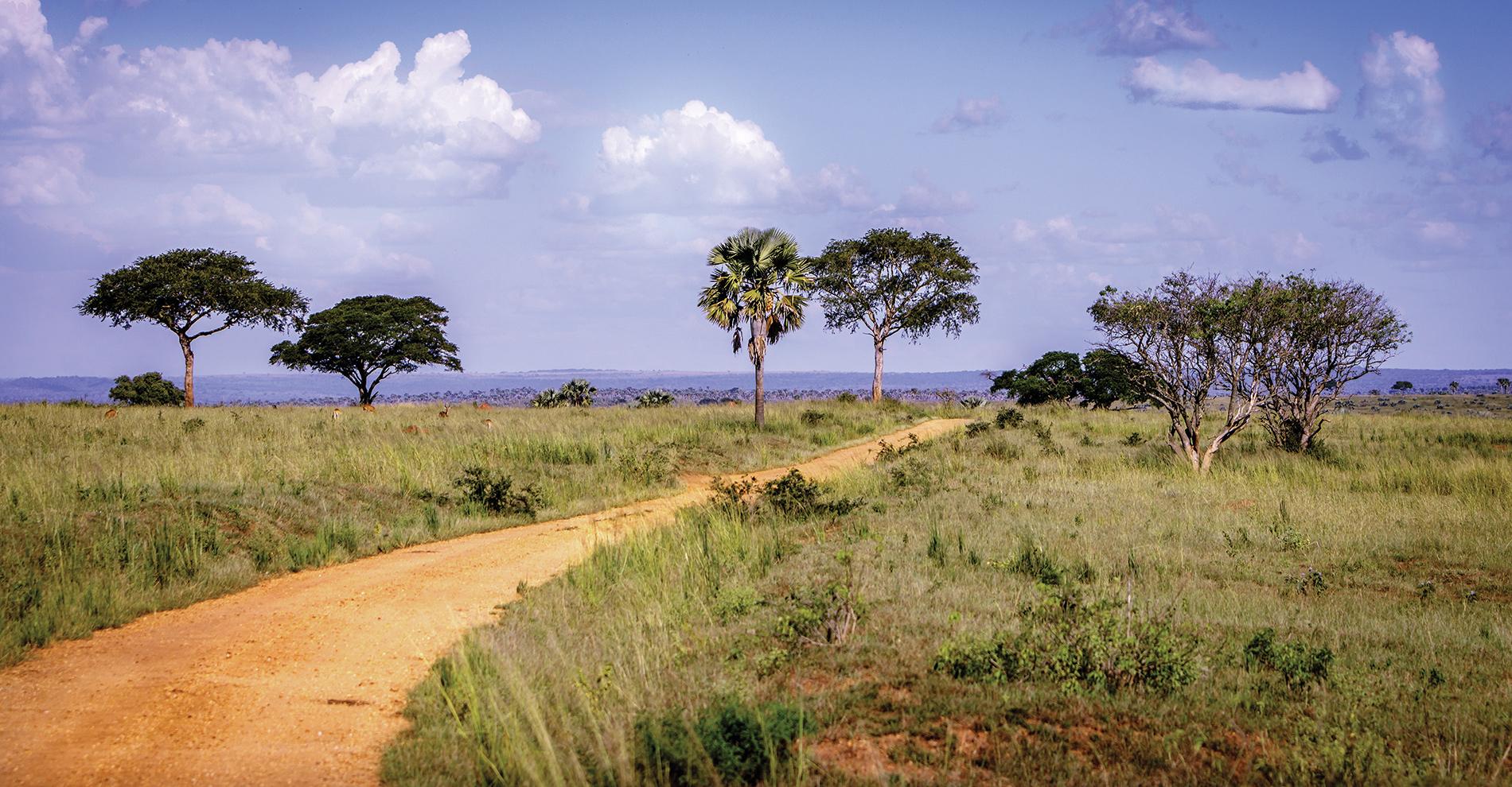 A red dirt road in Gulu, Uganda.
