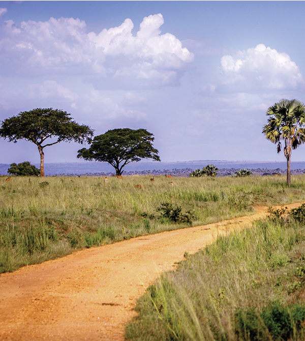 A red dirt road in Gulu, Uganda